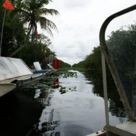 Foto's Florida